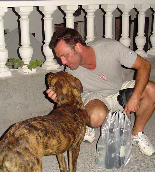Barry Edwards, stray dog in Santorini, Greece 2006