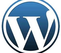 WordPress CMS: With Great Power Comes Great Responsibility